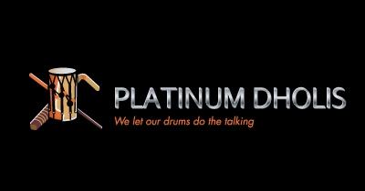 logo_pdholis